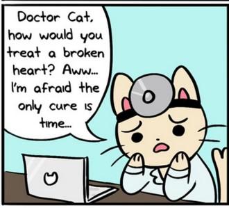 ASK DR CAT