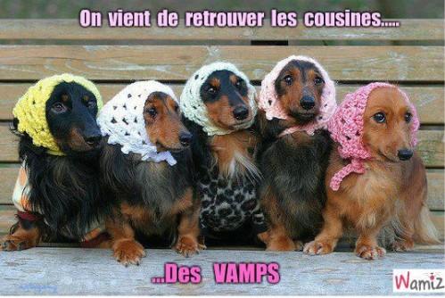 les-vamps-39545